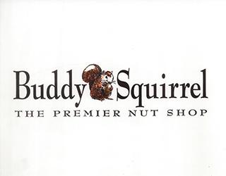 Branding and Marketing of Buddy Squirrel logo